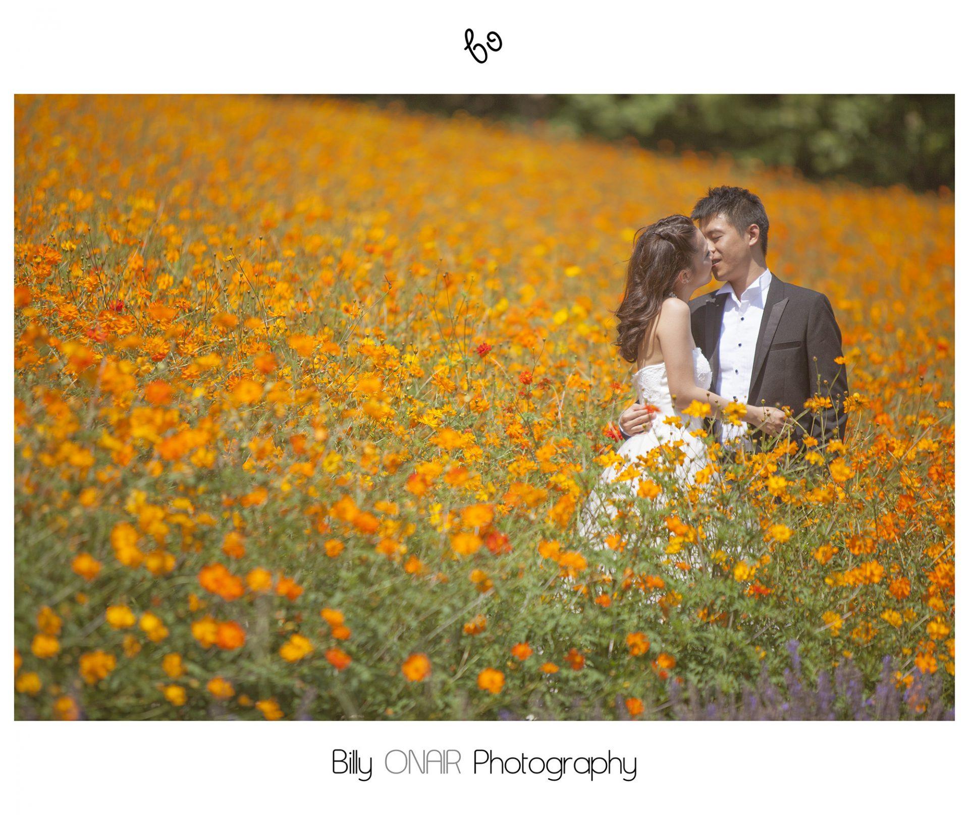 Crystal And Shaun Hokkaido Pre Wedding